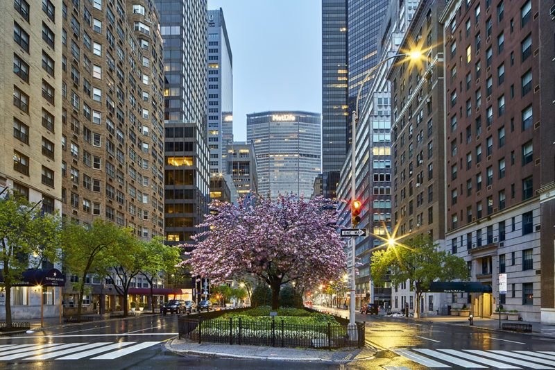 pandemic city lockdown new york cp krenkler fotografie fotokunst hamburg pandemie in new york nyc fine art print