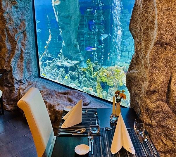 marco skura la mer unterwasserrestaurant neuwied kunst entdecken arttrado acrobatics in acryl ausstellung art and food